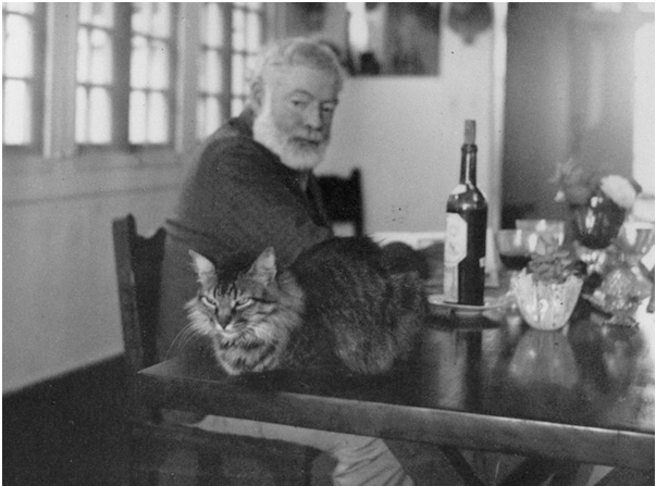 Ernest-Hemingway-Collection-John-F-Kennedy-Presidential-Library-and-Museum-Boston1.png